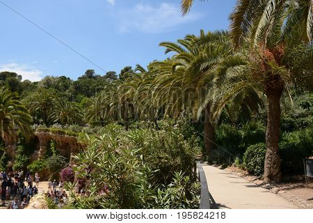 Palm alley in famous Park Guell, Barcelona, Spain
