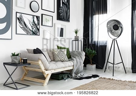 Posters Above Sofa