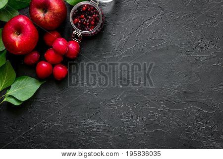 Apple, pulm and cranberry for summer ice drink on black table top view copyspace.