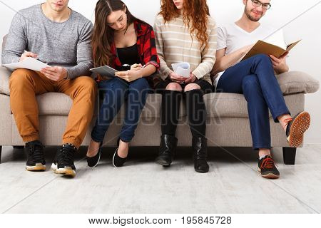 Diverse young students preparing for exam, sitting on sofa in living room and studying, studio shot, crop