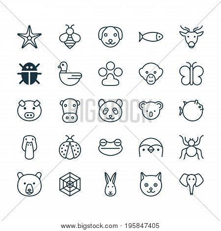 Nature Icons Set. Collection Of Bear, Moth, Claw Print And Other Elements