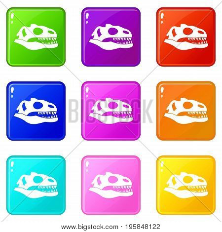 Skull of dinosaur icons of 9 color set isolated vector illustration