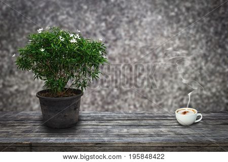 Green ornamental plants flowering white in old flower pot and a cup of coffee on wooden planks with abstract background blurred of marble wall for background. Abstract background.
