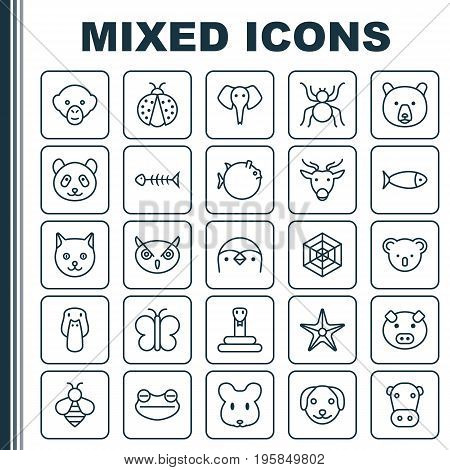 Nature Icons Set. Collection Of Cobweb, Bear, Kitten And Other Elements