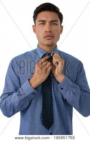 Portrait of businessman adjusting necktie while standing against white background