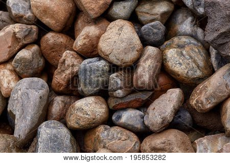 Background of many rough wet stones after rain texture