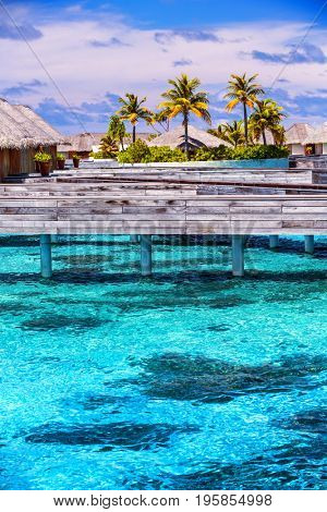Vacation on Maldives, cute little bungalow standing over water, tropical nature, beach resort, perfect place for honeymoon