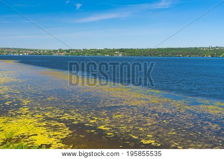 Early summer landscape with slimy Dnipro riverside Ukraine