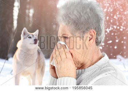 Senior ill woman with tissue and pet on background. Concept of allergies to dogs