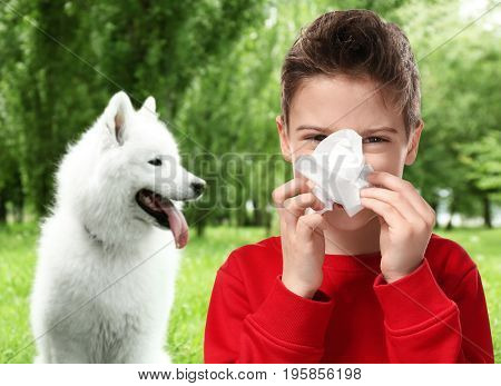 Little boy with tissue and pet on background. Concept of allergies to dogs