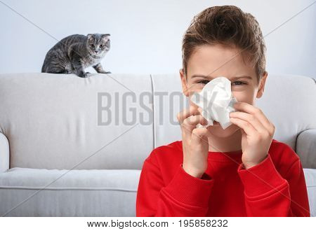 Little boy with tissue and pet on background. Concept of allergies to cats