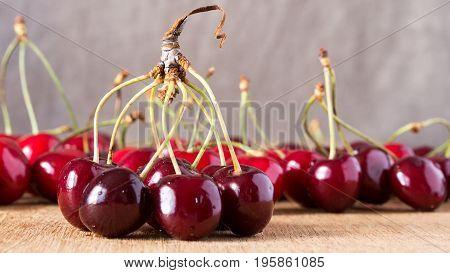 Tasty Cherry Fruit