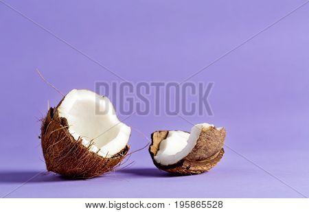 Fresh coconut on a bright purple background