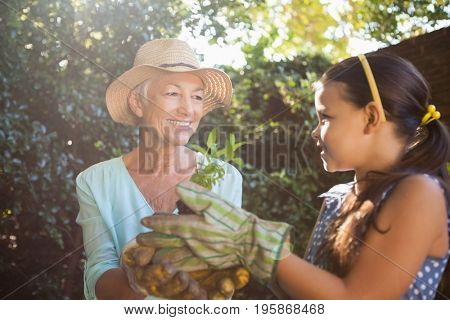 Smiling senior woman with granddaughter holding seedling against plants in backyard