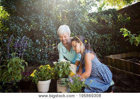 Grandmother looking at granddaughter planting flower pots in backyard