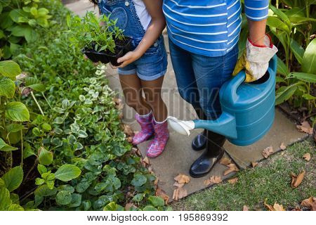 Low section of senior woman and granddaughter holding watering can at backyard