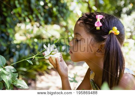 Side view of girl smelling white flower at backyard