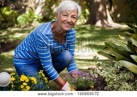 Portrait of happy senior woman kneeling while planting flowers in backyard