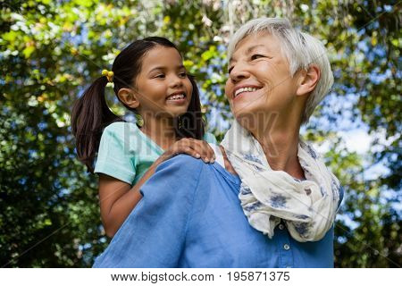 Low angle view of happy grandmother giving piggyback to granddaughter against trees at backyard