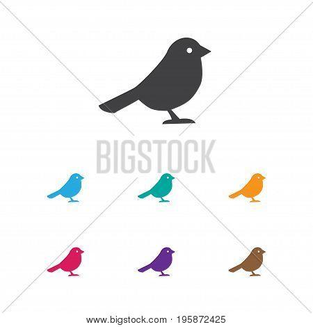 Vector Illustration Of Zoology Symbol On Bird Icon