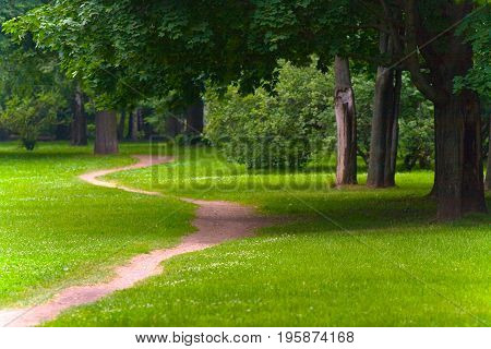 Horizontal landscape. A picturesque path in the park of the middle zone of Russia.
