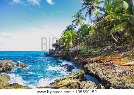 Wild tropical rocky shore, bay, lagoon. Green palm trees on the rocks and girl on the rocks. Las Galeras, Samana, Dominican Republik