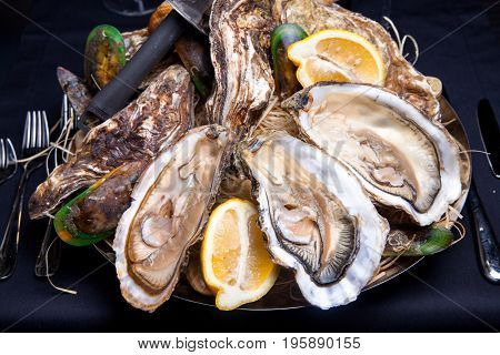 Opened Oysters on folk decorated plate with lemon and oyster knife in restaurant feeding with rose champagne