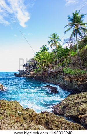 Wild tropical rocky shore, bay, lagoon. Sea Splash, Green palm trees on the rocks. Las Galeras, Samana, Dominican Republic