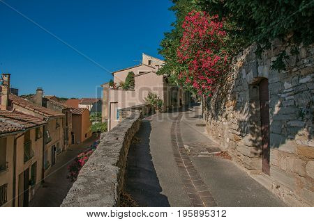 View of traditional stone houses and flowers on a street at sunrise, in Châteauneuf-de-Gadagne. Located in the Vaucluse department, Provence-Alpes-Côte d'Azur region, southeastern France