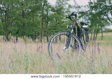 A bicycle stands in a meadow in a tall grass with flowers in the background trees are seen