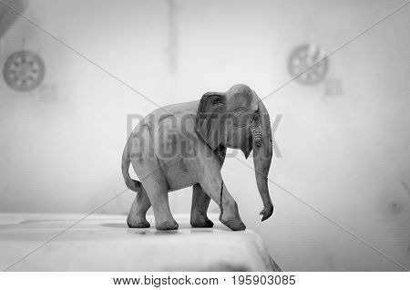 elephant walking on the table the black and white film