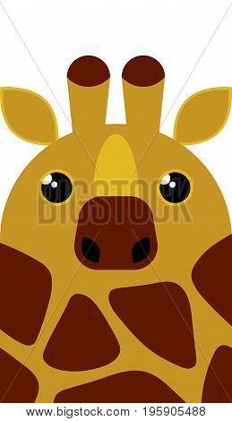 Cute Giraffe Character