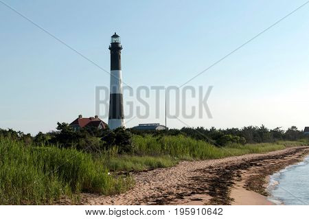 The back of the fire island lighthouse with a seaweed covered beach green beach grass and the bay in the picture