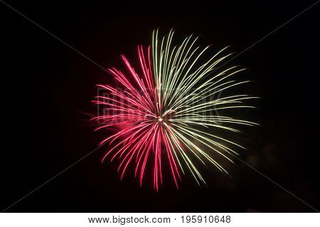 one half either red or pink and the other half white firework explodes in the dark nights sky