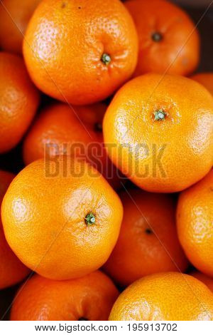A close up photo of ripe tangerines