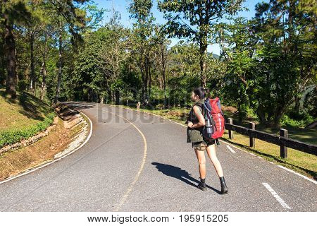 Beautiful woman hiker standing on forest trail and looking away. Female with backpack on hike in nature. Travel Concept
