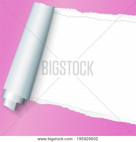 Realistic pink torn open paper with space for text on white background, holes in paper. Torn strip of paper with uneven, torn edges. Coiling torn strip of paper