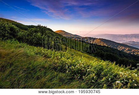 Grassy Meadow On A Hillside At Beautiful Reddish Sunrise
