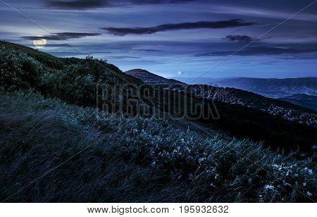 Grassy Meadow On A Hillside At Midnight