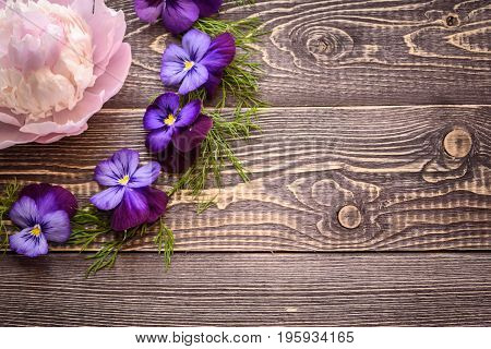 Violets on a wooden background. Copy space