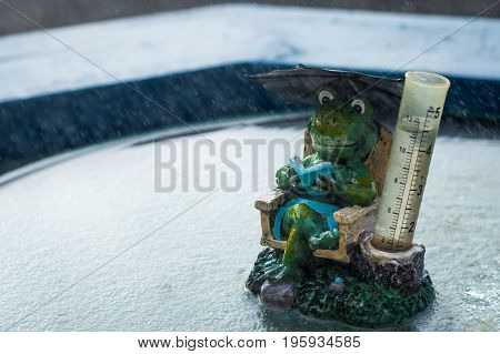 Wonderful frog rain gauge ornament in the rain.