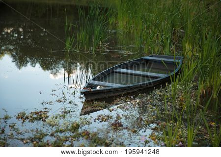 submerged Boat moored on the lake between the reeds
