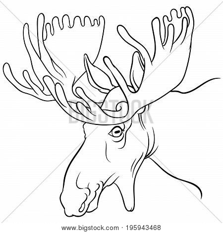 moose mascot - Vector images of moose deer head on a white background