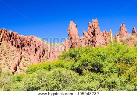 Western-like landscape with red rock formations in dry Quebrada de Palmira near Tupiza, Bolivian Andes, South America.