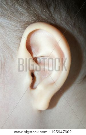 Otitis. Photo For Your Design