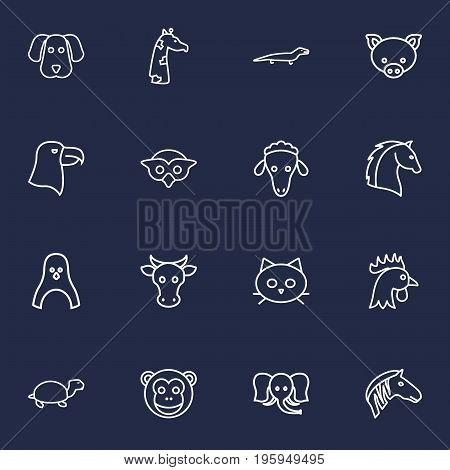 Set Of 16 Alive Outline Icons Set