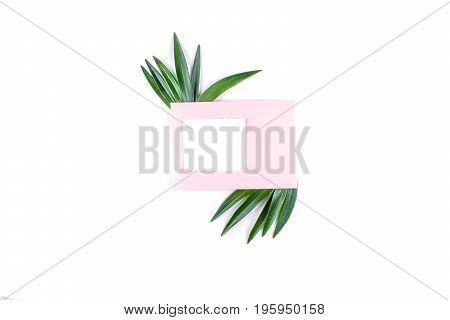 Frame with leaves isolated on white background. Flat lay style, overhead view with place for yor text.