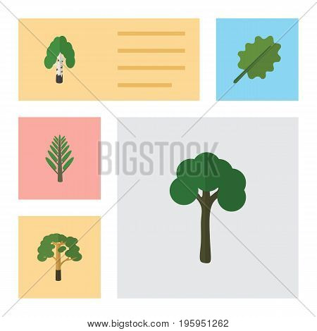 Flat Icon Ecology Set Of Timber, Evergreen, Wood And Other Vector Objects
