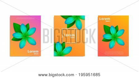 Tropical frangipani covers design. Posters with realistic Frangipani flowers. Minimal design