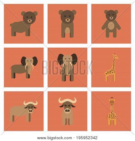 assembly of flat icons nature giraffe bull bear elephant
